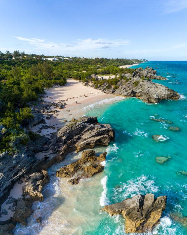 142019 Bermuda 2019 Swim 10 Campoctober gymb76fvIY